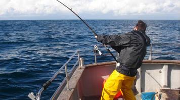 sea-fishing